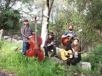 The Little Fuller Band