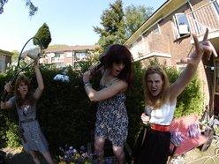 Image for The Backdoor Virgins