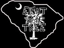 Eight Oh Tree