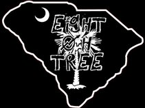 Eight Oh Tree