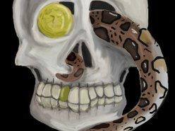 Image for War Tortoise