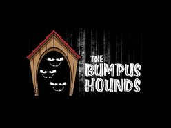 Image for The Bumpus Hounds