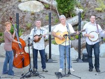 Stray Dogs Bluegrass Band