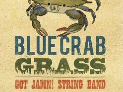 Image for GOT JAMN! String Band