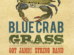 Image for GOT JAMN! String Band