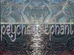Image for psychedelephant