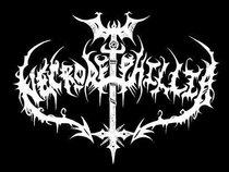 Necrodeiphillia