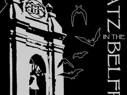 Image for Batz in the Belfry