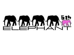 Image for The 5th Elephant