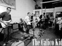 The Calico Kids