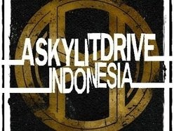 Image for A Skylit Drive