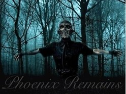 Image for Phoenix Remains