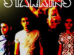 Image for The Starkins
