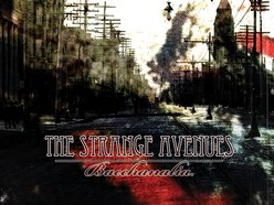 Image for The Strange Avenues
