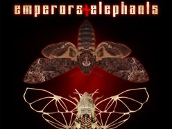 Image for Emperors and Elephants