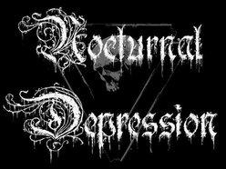 Image for Nocturnal Depression