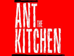 Image for Ant The Kitchen