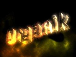 Image for Organik