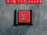 Image for Big Fat Snake