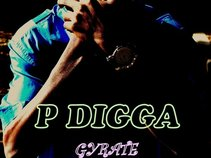PDIGGA