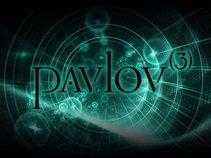 Matt Tate Music / Pavlov(3)