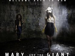 Image for Mary and the Giant