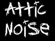 Attic Noise