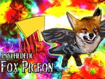 Psychedelic Fox Pigeon
