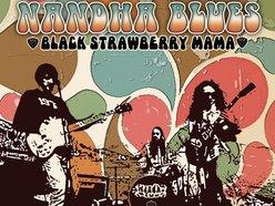 Image for Nandha Blues Band