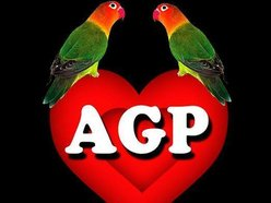 Image for AGAPORNIS