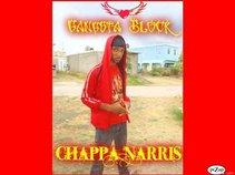 Chappa Narris