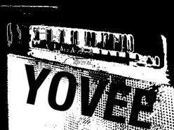 Image for YOVEE