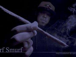 Image for Turf Smurf