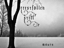 Image for Crestfallen Still
