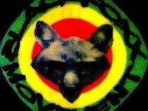 BLACK FOXX MOVEMENT SOUND