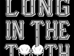 Image for Long In The Tooth (LITT)