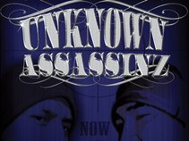 unknown assassinz