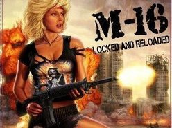 Image for M-16