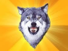 Image for The Urban Wolves
