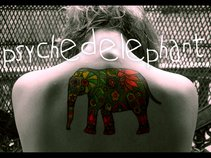 Psychedelephant