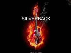 Image for Silverback