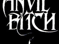 Image for Anvil Bitch