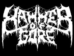 Image for HAMMER OF GORE