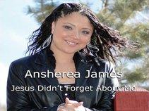 Ansherea