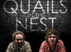 Image for Quails In The Nest