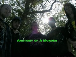 Image for Anatomy of A Murder
