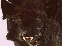 Black Wolf Cult