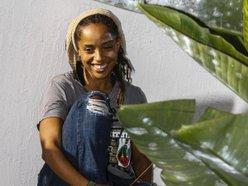 Image for Damali Adele Ife