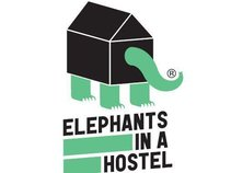 Elephants in a Hostel