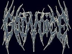 Image for Godvoice